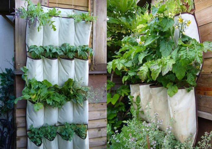 Herb Garden for Small Spaces